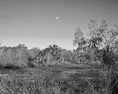 Photograph - Sunset Lights And Super Moon Shadows by Carol Bradley
