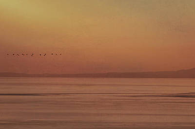Photograph - Victoria Sunset by Marilyn Wilson