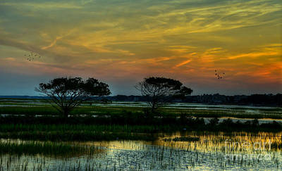 Photograph - Sunset Marsh by Kathy Baccari