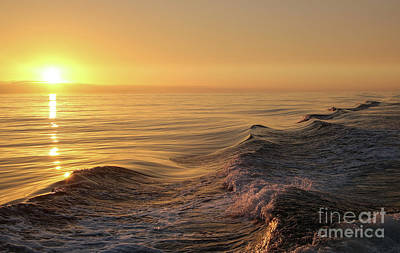 Photograph - Sunset Meets Wake by Suzanne Luft