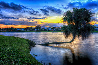 Photograph - Sunset by Mike Sperduto
