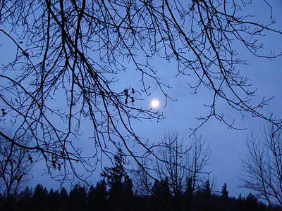 Photograph - Sunset Moon by Lisa Rose Musselwhite