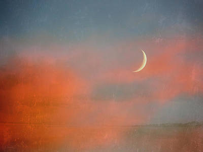 Photograph - Sunset Moon by Shawna Rowe