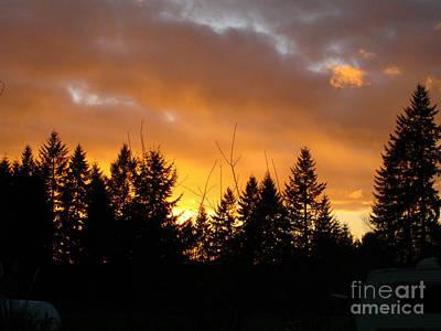 Sunset My Front Yard Art Print by Mary Jo Zorad
