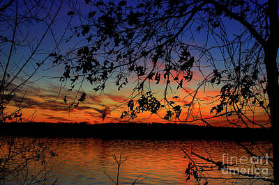 Photograph - Sunset Oak Silhouettes Sky Reflective Art by Reid Callaway
