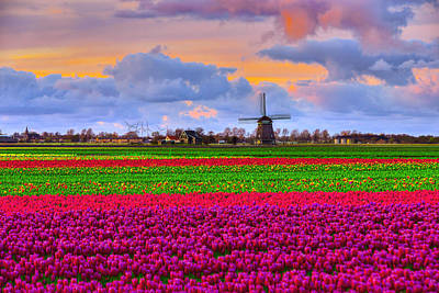 Netherlands Windmill Photograph - Sunset Of Colors by Midori Chan
