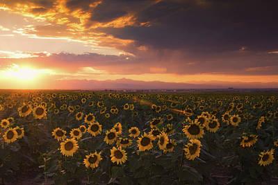 Photograph - Sunset Of Summer by John De Bord