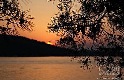 Sunset Art Print by Olivia Narius