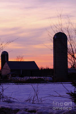 Photograph - Sunset On A Dairy Farm by Kathy DesJardins