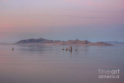 Sunset On Antelope Island Art Print