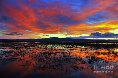 Photograph - Sunset On  Marshes  by Irina Hays