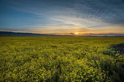 Photograph - Sunset On The Carrizo Plain by Scott Cunningham