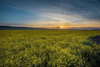 Photograph - Sunset On The Carrizo Plain by Scott Cunningham