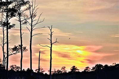 Photograph - Sunset On The Eastern Shore by Kim Bemis