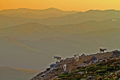Art Print featuring the photograph Sunset On The Edge by Scott Mahon