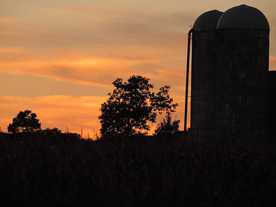 Photograph - Sunset On The Farm by Teresa Schomig
