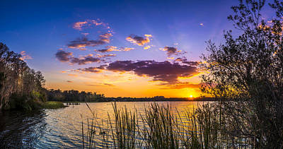 Saw Palmetto Photograph - Sunset On The Lake by Marvin Spates