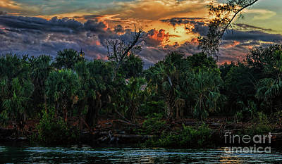 Photograph - Sunset On The Loxahatchee River by Olga Hamilton