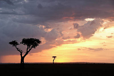 Photograph - Sunset On The Masai Mara by Michele Burgess