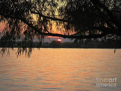 Photograph - Sunset On The Mississippi by Rosanne Licciardi