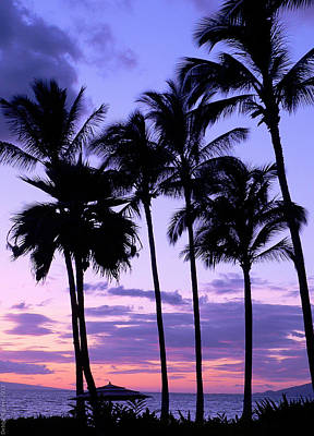Art Print featuring the photograph Sunset On The Palms by Debbie Karnes