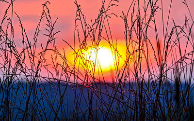 Prairie Sunset Wall Art - Photograph - Sunset On The Prairie  by Parker Cunningham