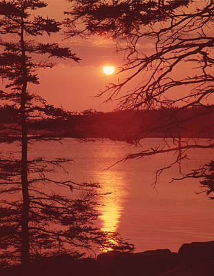 Photograph - 136235-sunset On The Schoodic Peninsula  by Ed  Cooper Photography