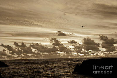 Print featuring the photograph Sunset On The Tasman Sea by Yurix Sardinelly
