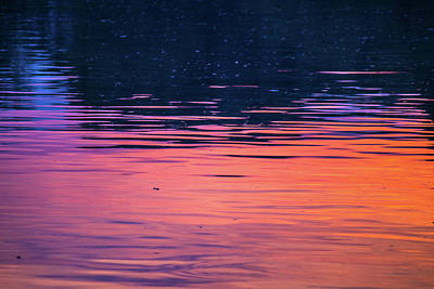 Photograph - Sunset On The Water by Jonny D