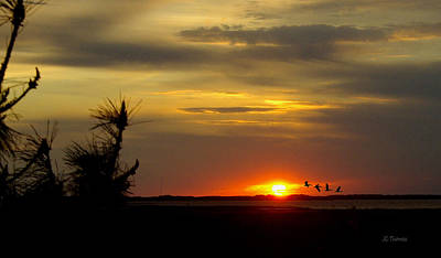 Photograph - Sunset Outer Banks by James C Thomas