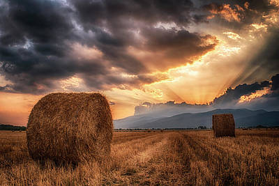 Photograph - Sunset Over Farm Field  by Plamen Petkov