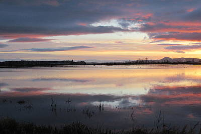 Photograph - Sunset Over Flooded Fields by Karen Molenaar Terrell
