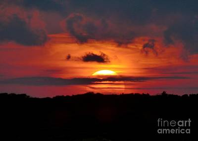 Photograph - Sunset Over Maritime Forest by Jean Wright