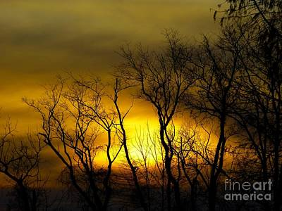 Art Print featuring the photograph Sunset Over Our Free Land by Donald C Morgan