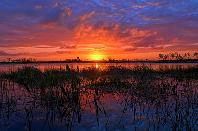 Photograph - Sunset Over Pine Glades Natural Area by Justin Kelefas