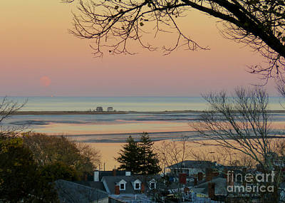Photograph - Sunset Over Rooftops by Janice Drew