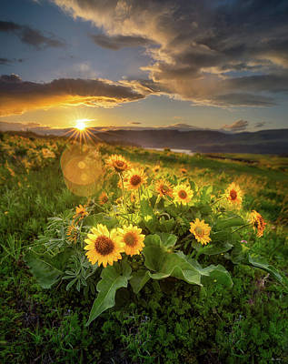 Photograph - Sunset Over Rowena by C Steele