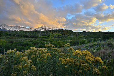 Photograph - Sunset Over San Juan Mountains From Dallas Divide by Ray Mathis