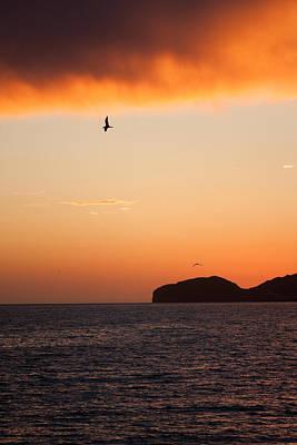Sunset Over Sea Of Cortez Art Print by Dina Calvarese