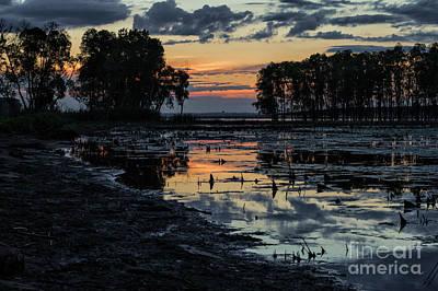 Thomas Kinkade - Sunset Over the Bog by Nikki Vig