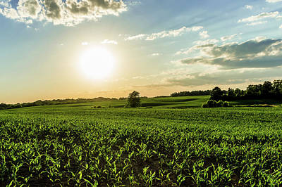 Photograph - Sunset Over The Corn Fields by Ray Sheley