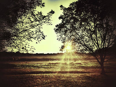 Photograph - Sunset Over The Field by Sarah Coppola