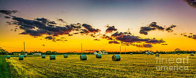 Photograph - Sunset Over The Fields  by Nick Zelinsky