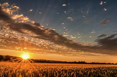 Sunset Over The Golden Meadow Art Print by Don Schwartz