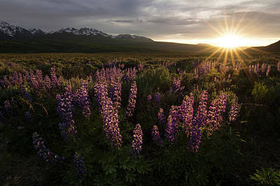 Sunset Over The Gore Range Art Print by Aaron Spong
