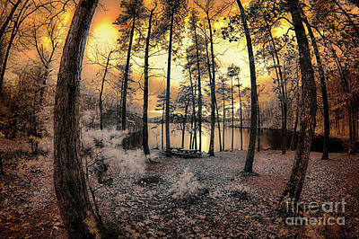 Photograph - Sunset Over The Lake  by Dan Carmichael