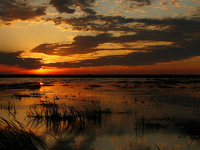 Photograph - Sunset Over The Marsh by Charles McKelroy