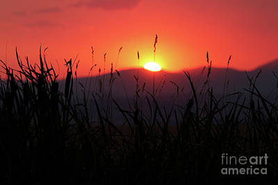 Photograph - Sunset Over The Mountain by Alyce Taylor