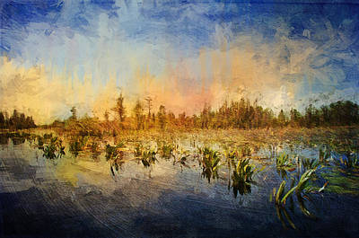 Sunset Over The Okefenokee Art Print