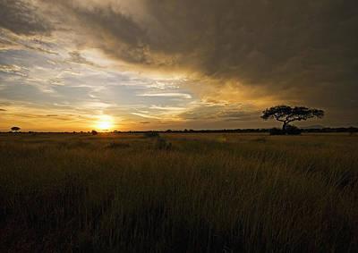 sunset over the Serengeti plains Art Print